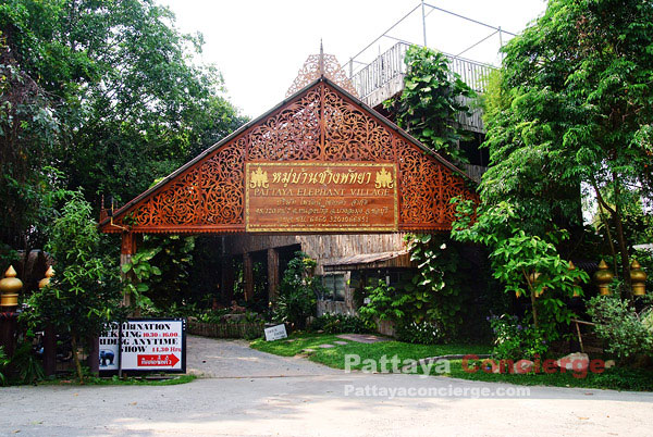 Pattaya_Elephant_Village